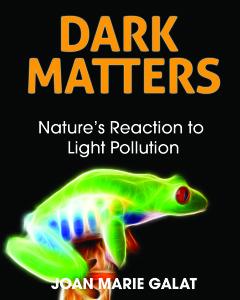 Dark Matters- cover - red deer press - hi res
